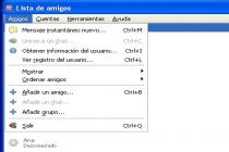 Captura Pidgin Portable