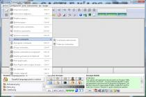 Captura SicurPas Professional Freeware
